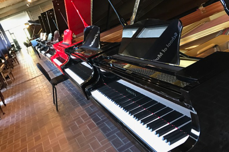 Piano and Stringed Instrument Sale