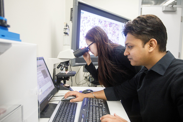 Two students working together at a computer and microscope