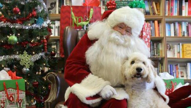 Santa Paws To Raise Money For Animal Shelter News