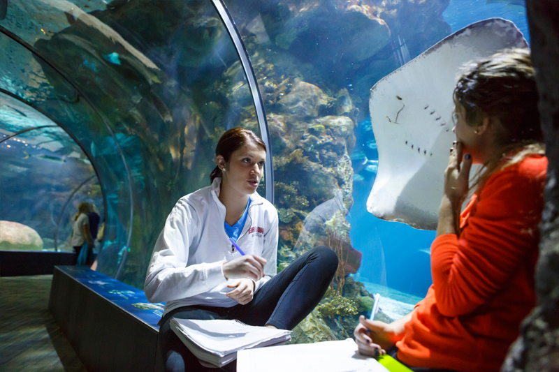 Henry Doorly Zoo and Aquarium, UNO Join STEM Learning Initiative