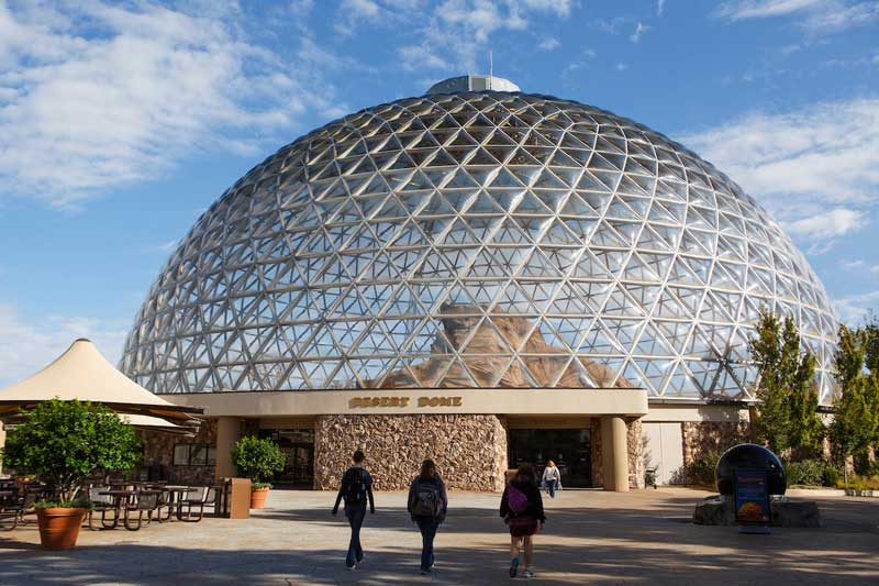 Discounted Zoo Memberships Now Available | News | University of ...