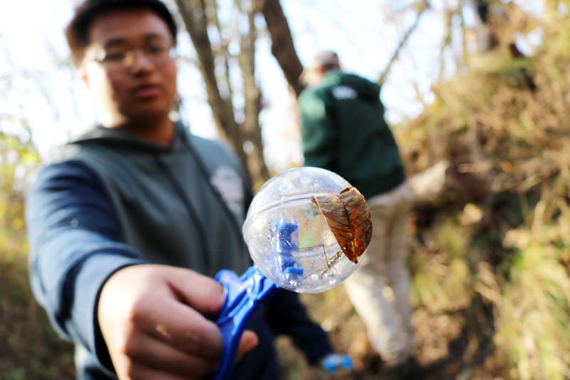 Student from Northwest High School captures a waterbug at Pawnee Creek